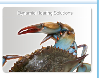 Dynamic Hosting Solutions Lincolnshire